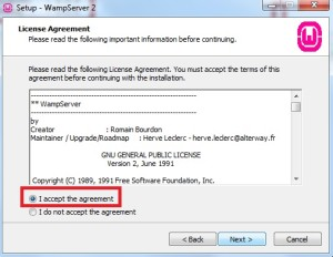 Marcando opção para aceitar os termos de uso do WAMP Server